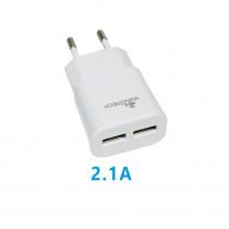 CCT-1067-WT CARICATORE DA RETE USBX2